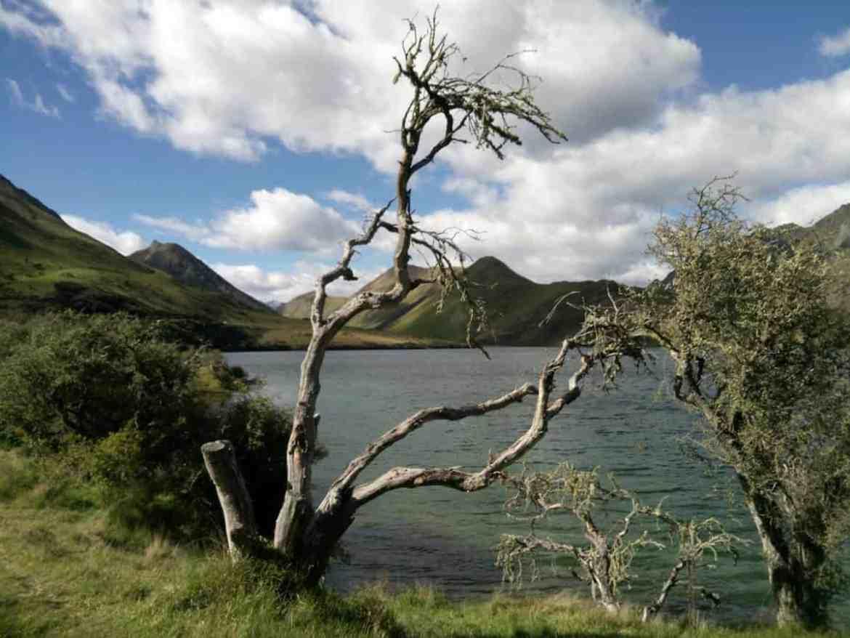 neuseeland-moke-lake-1