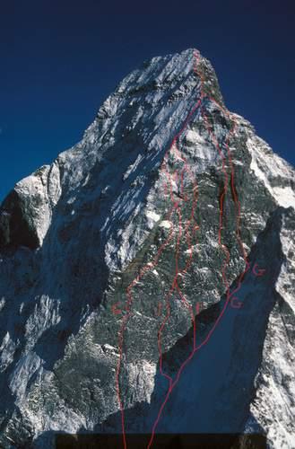 Itinerari di salita al Naso di Zmutt: da sinistra a destra, via Gogna-Cerruti, via Piola-Steiner, via Freedom, via Free Tibet e via Aux amis disparus. Foto aerea di Beat. H. Perren, Zermatt