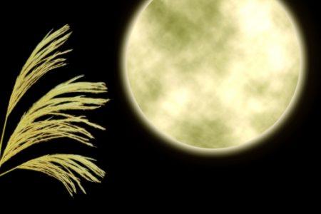 生物がいるかも!?月の表面の温度と環境は地球と異なる!?