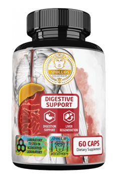 Recommended digestion support supplement containing papain and other beneficial substances - DIgestive Support from Apollo Hegemony