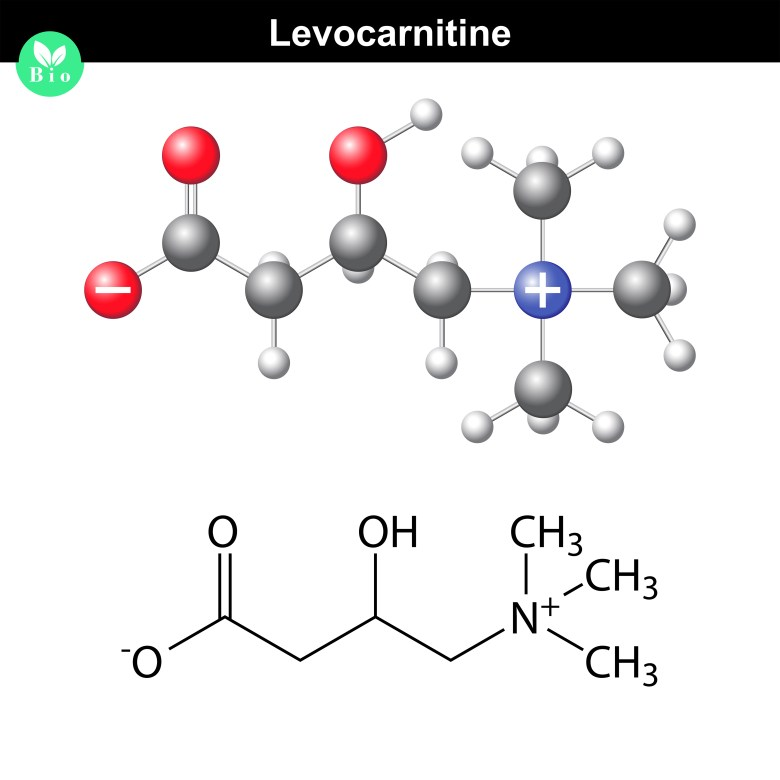 L-Carnitine - chemical structure and formula