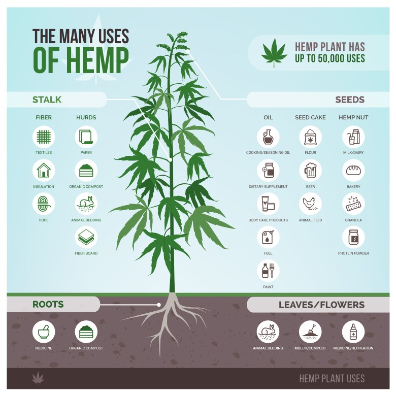 As you can see hemp has many usages!