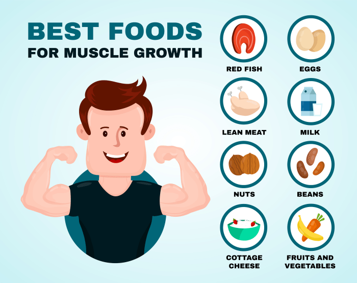 What to eat to gain muscles