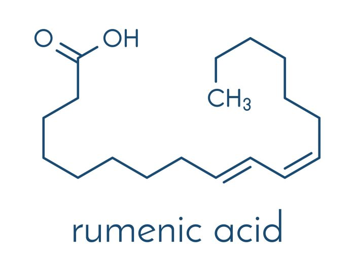Chemical structure of rumenic acid (CLA)