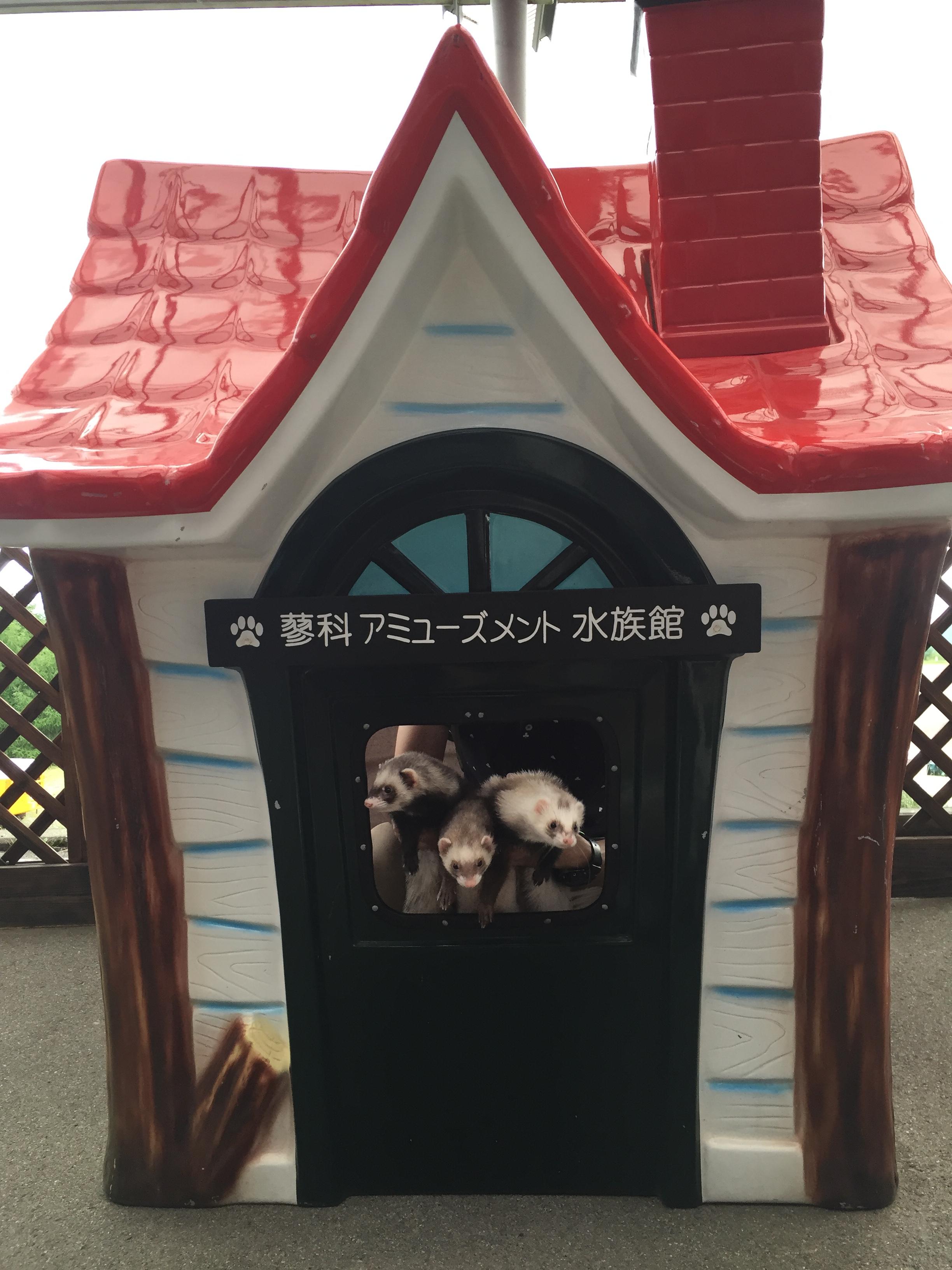 蓼科アミューズメント水族館記念撮影