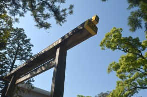 Close up of the torii endpiece
