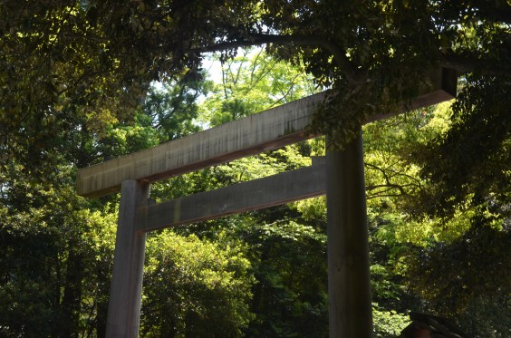 Torii with trees
