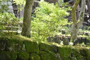 Kiyomizudera Buddhas