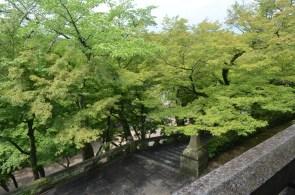 Steps at Kiyomizudera