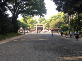 Torii for Meiji Shrine