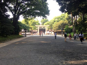 Torii for Meiji Shrine