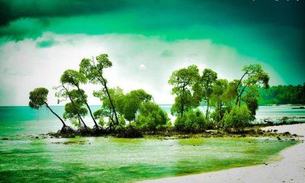 ANDAMAN AND NICOBAR ISLANDS – @amanrajputphotography