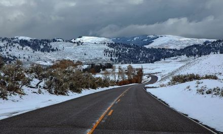 YELLOWSTONE NATIONAL PARK – @the_roving_spirit