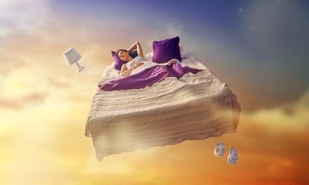 Dream o dream