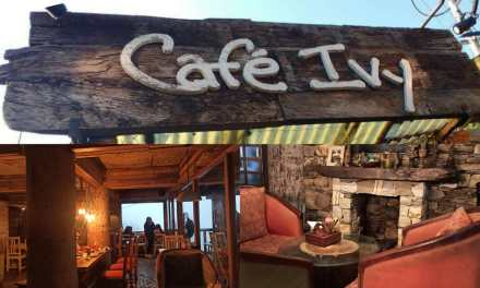 CAFE IVY – a cafe in the mountains