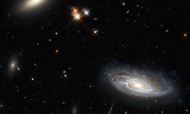 Hubble Captures Two Gargantuan Galaxies in the Perseus Galaxy Cluster