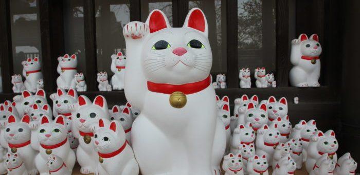 Maneki neko gato da sorte japonês