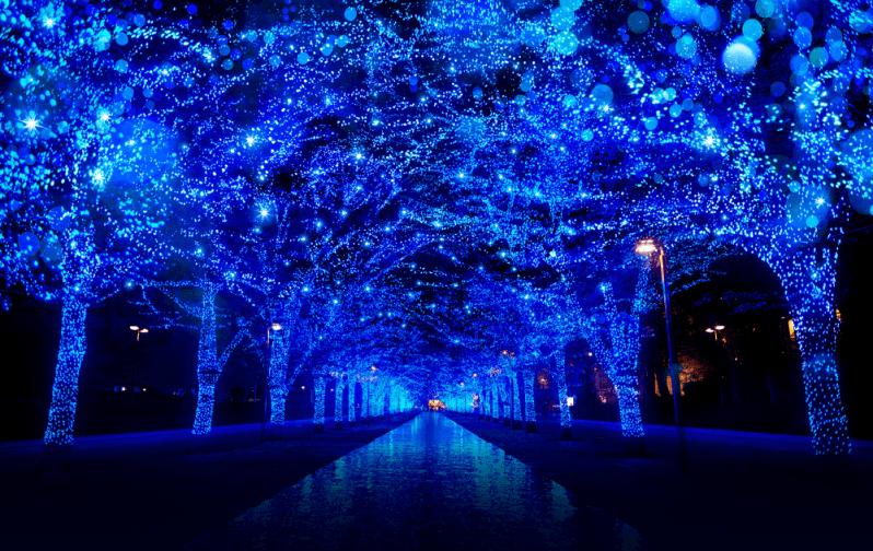 Shibuya Blue Cave luminarie 2018
