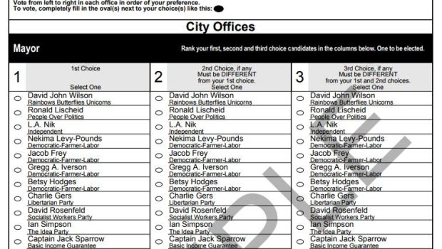 Minneapolis Ward 5 Municipal Election 2017 Sample Ballot