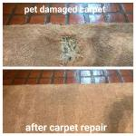 Carpet Patching 805 910 7066 Gorilla Carpet Cleaning Experts We Care About Our Customers