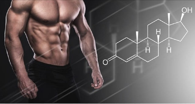 What Does Testosterone Do