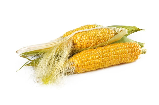 How many calories in an ear of corn