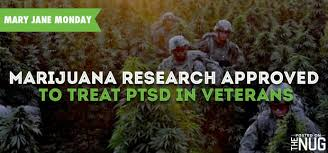 PTSD+MMJ-Study