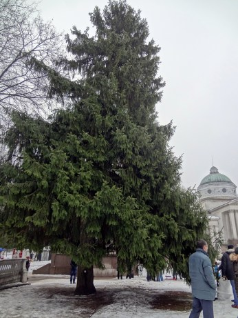Arkhangelskoye - Colonnade & Yusupov Mausoleum
