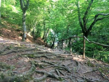 Trail to Jur-Jur