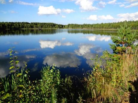 Lake in Estonia 1