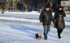 3 Walking in Gorky Park