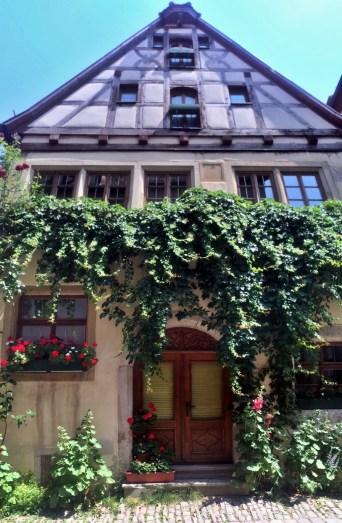 v Rothenburg 4