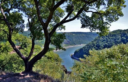 Lorelei Rhine Valley 3