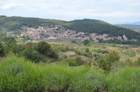 The village of Svirče