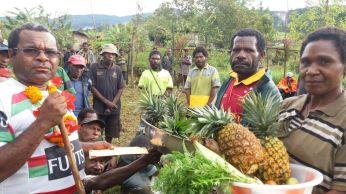 Pineapple galore at Uluna Village