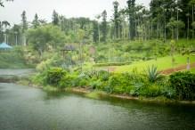 Southeast BotanicalG-20