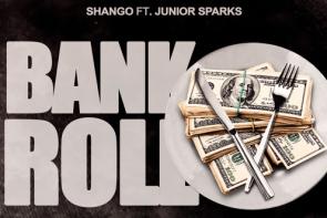 Shango Junior Spark SavLyfe