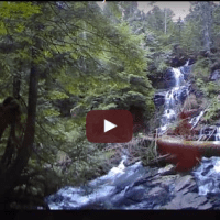 Take a Virtual Waterfall Hike