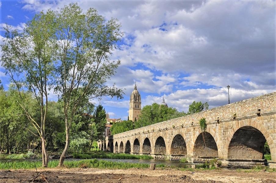 Salamanca view with bridge