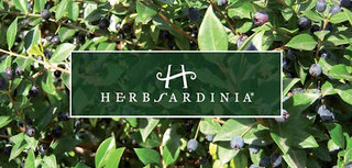 Herbsardinia cosmesi biologica