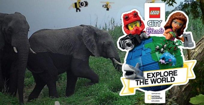 Lego National Geographic : i set che ispirano i bambini a proteggere la natura