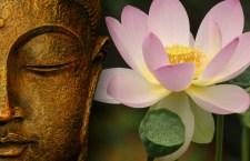 Cursuri de Qigong pentru incepatori, cu Ovidiu Pescarasu – Despre linistea interioara