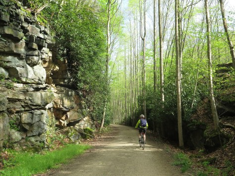 Biking the Great Allegheny Passage rail-trail, Confluence to Adelaide, PA on Rails-to-Trails' spring sojourn © 2016 Karen Rubin/goingplacesfarandnear.com.