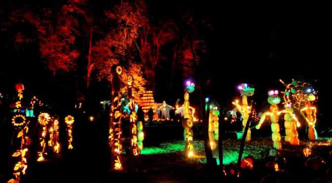 Halloween Happenings, Oktoberfest Take Center Stage in Fall Festivals