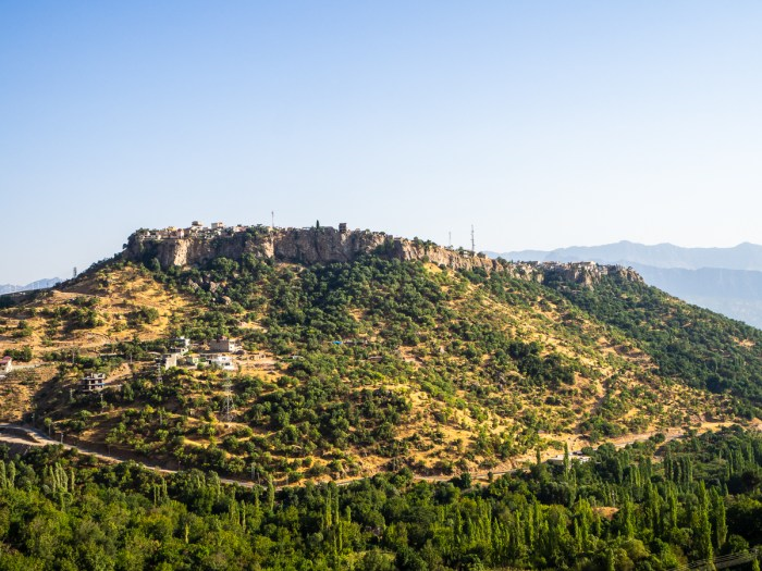 View of Amedi
