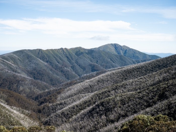 View of Mt Feathertop