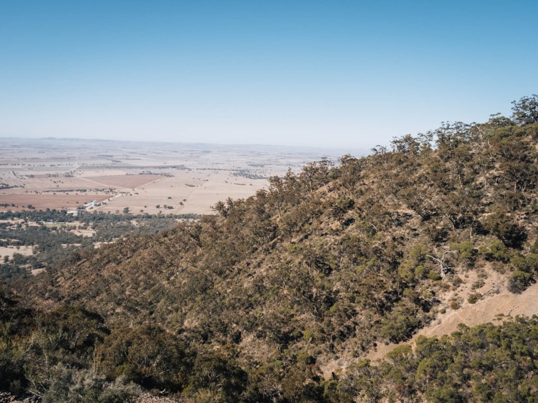 Mount Remarkable trail