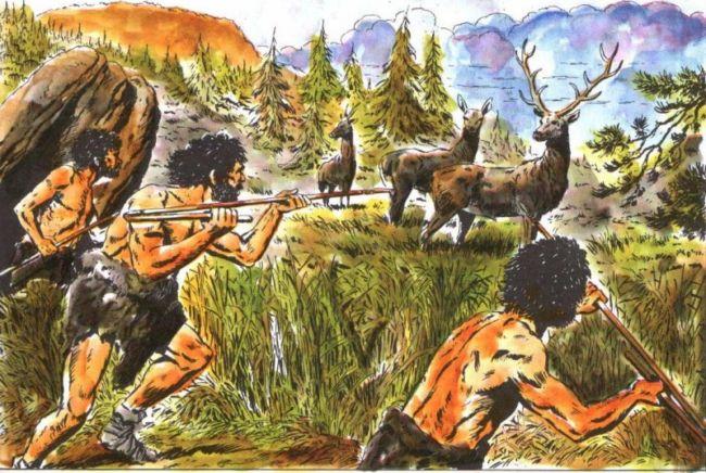 Ciri – Ciri Zaman Neozoikum Berdasarkan Pembagian Waktu