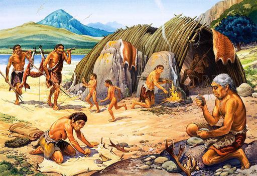 Ciri – ciri zaman Neozoikum di zaman kuarter