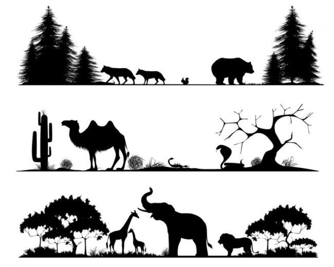 klasifikasi makhluk hidup 6 kingdom